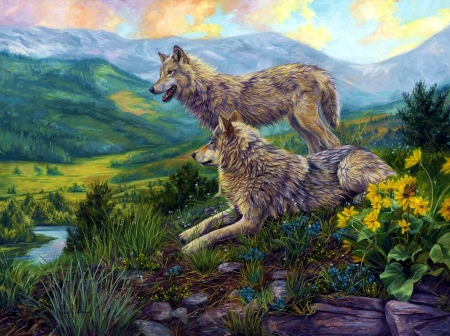 Wolf Heaven Other Amp Abstract Background Wallpapers On