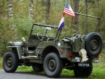 US Army WWII Willy's Jeep