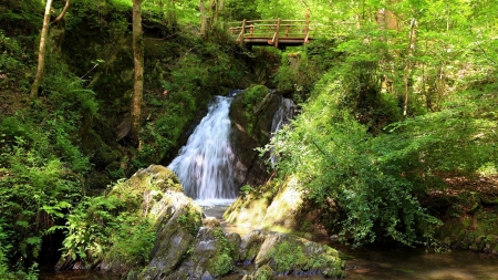 wooden bridge above waterfall - wood, waterfall, rocks, forest, bridge