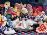 Patchwork Hearts - Kittens F