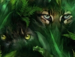 'Jungle eyes'.....