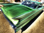 gorgeous green fins hdr