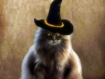 Witch Fluffy