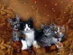 Autumn Kittens