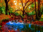 *Ride to the autumnal forest*