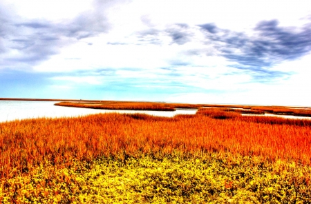 winding bay inlet in autumn - colors, grass, autumn, inlet, sky