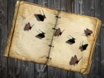 Butterfly Book on Wood