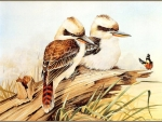 PAIR OF KOOKABURRA'S