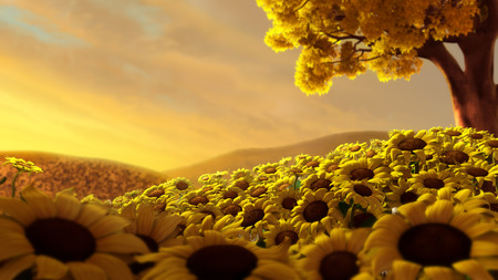 Sunflowers - flowers, petals, sunflowers, sunflower, nature, tree, hills