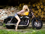 beautiful girl on harley davidson sportster