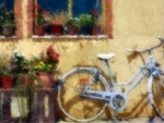 Old Bicycle f