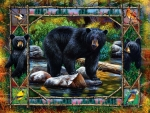 Black Bear and Cubs F