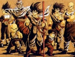 Z fighters