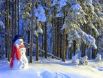 Snowman in the Forest