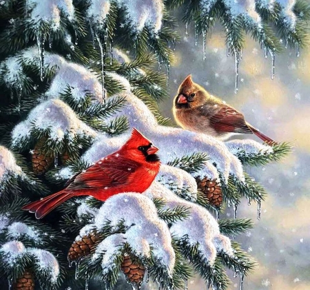 Cardinals in winter other abstract background - Winter cardinal wallpaper ...