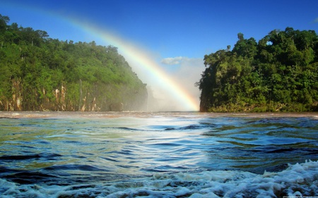 Nice Rainbow - rainbow, skies, forest, nature, trees, water