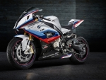 bmw s1000rr motogp safety bike