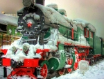 Snowy Locomotion