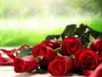Red Roses Green