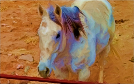 He can see me - oil paint, horse, barnyard, enhanced