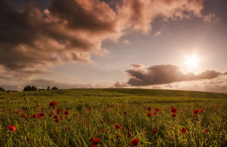 country sunset fields amp nature background wallpapers on