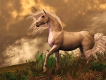 'The golden unicorn'.....
