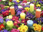 Spring Flowers and Candles