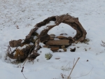 Driftwood in Snow