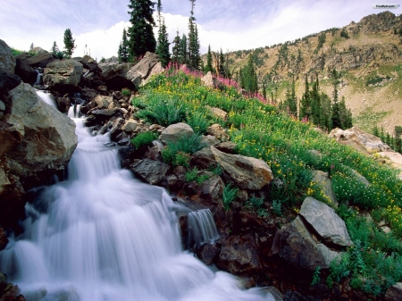 Waterfall - waterfall, mountain, beautiful, nature