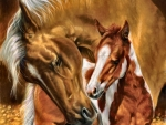 A Mother's Touch - Horses F