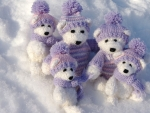white teddy bears in the snow