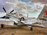 WWII Mustang P51