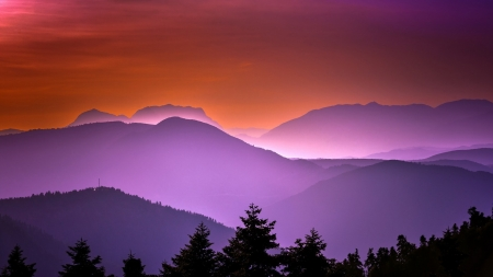Evening in mountains - shadows, nice, nature, sunrise, mountains, pines, fog, colors, sunset, black, tree, foggy, violet, silhouettes, beautiful, amazing, putple, orange, evening, awesome