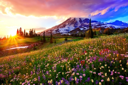 Sunrise over the mountain meadow - Sunsets &amp- Nature Background ...
