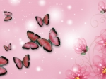 Pink Florals and Butterflies