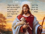 Good shepherd quote