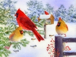 Cardinals I n The Snow