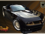 Trans Am- Bandit Edition