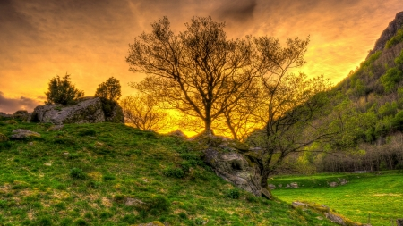 rocky grass covered hill hdr - sunset, grass, rocks, valley, hill, hdr, trees