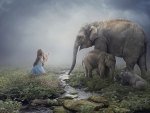 Girl and elephants