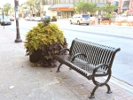 New Style Planter in downtown Brampton Ontario Canada