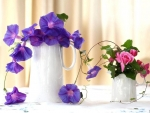 Beautiful purple flowers and roses