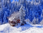 house on a mountain in winter