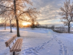 park bench in a wintry sunrise hdr