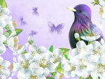 Purple Bird and Butterflies
