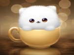 Cup of cute kitty