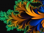 colourful fractal feather