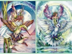 Fairies on Hummingbird and Dove C