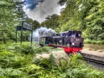 steam train in a forest hdr
