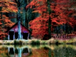 Autumn Reflections F